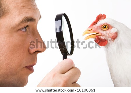 Close-up profiles of man and hen looking at each other through lens in maleâ??s hand