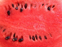 Close up red watermelon background