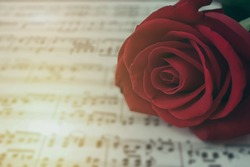 close up rose flower on the note music. vintage effect.