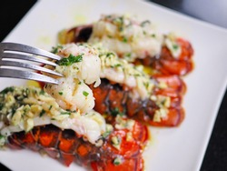 Close up several red orange color arranged garlic butter lobster tails with parley baked for dinner at home