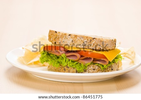 Close-up shoot of a Sandwich with rich Salad in simple setting