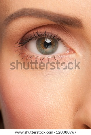 Close-up shot of beautiful female eye with makeup