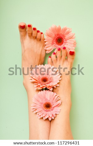 Close-up shot of beautiful woman feet with red pedicure and pink flowers around