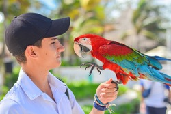 Close up shot of Boy with parrot in hand