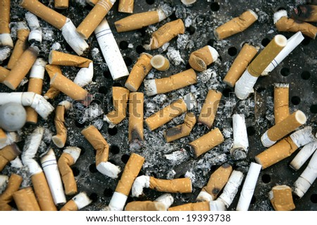 close up shot of cigarettes butt