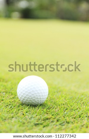 close up shot of golf ball on green grass