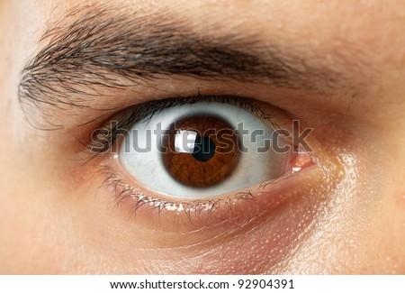 close-up shot of man brown eye