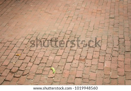 Close up shot of pavement road #1019948560