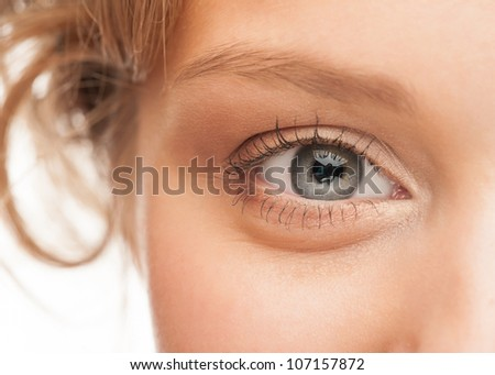 Close-up shot of woman eye with beautiful makeup looking at camera
