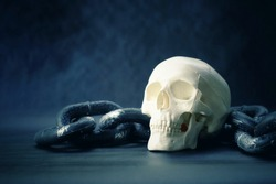 close up skull and old chain, copy space background for text, happy halloween day concet, vintage tone