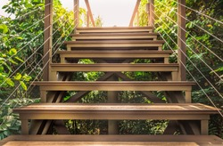 Close up stairs in the tropical forest with sun