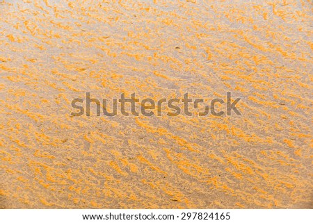 close-up texture isolated mud splashes by car in natural lighting