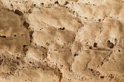 Close-up texture of bread crust, abstract pattern background. In detail the texture of the bread pattern.