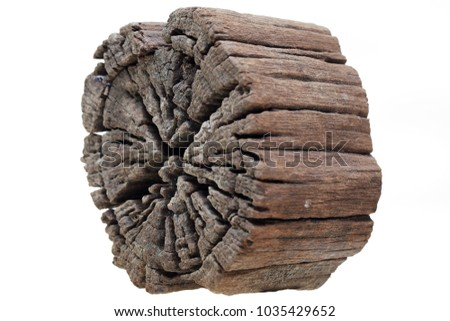 close up texture of grunge weathered cross section tree trunk isolated on white background. #1035429652