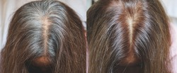 Close up to gray hair root on old woman head , before and after coloring hair concept