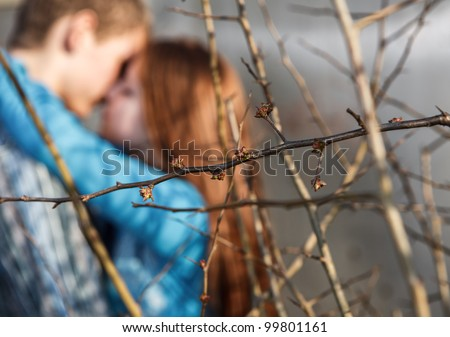 close up tree branches with being dismissed leaves against the kissing couple