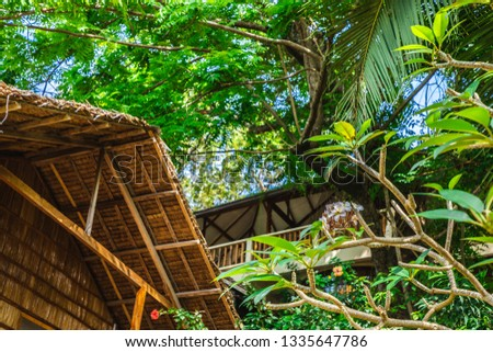 Close up tropical style, Philippine indigenous indigenous materials, hand built buildings #1335647786