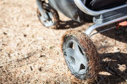 Close up view at wheel of the baby carriage, tire is in fir needles