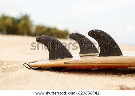 Close up view of a carbon fiber fins on a design wooden surf shortboard surfboard board at sunrise or sunset on sand beach with palm tree. Vacation concept. Summer holidays. Tourism, sport. #629636942