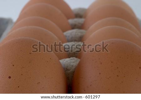 Opinión del primer de un cartón de huevos marrones, vistodel extremo.