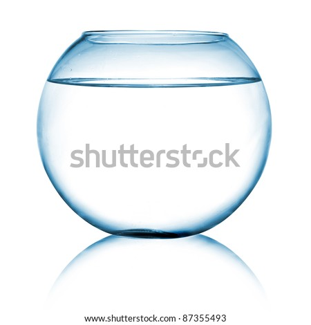 close up view of  a fish bowl on white background