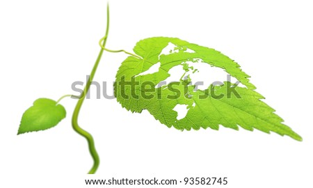 Close up view of a leaf with the world map cut out - ecology concept