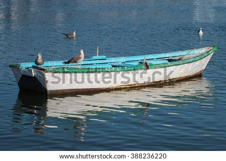 Close up view of an anchored traditional fishing boat with seagulls. #388236220