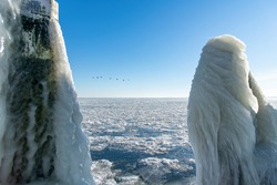 Close up view of an ice covered mooring post on a stone pier on the Afsluitdijk in The Netherlands surrounded by the frozen over IJsselmeer with birds flying by; almost abstract ice sculpture