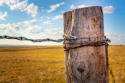 Close up view of an old, weathered fence post that is wrapped in rusty barbed wire and was shot late in the day with lots of grass and clouds in the background