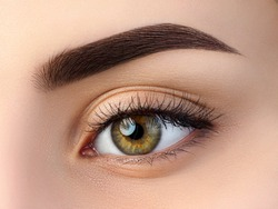 Close up view of beautiful brown female eye. Perfect trendy eyebrow. Good vision, contact lenses, brow bar or fashion eyebrow makeup concept