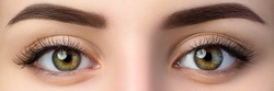 Close up view of beautiful brown female eyes. Perfect trendy eyebrow. Good vision, contact lenses, brow bar or fashion eyebrow makeup concept.