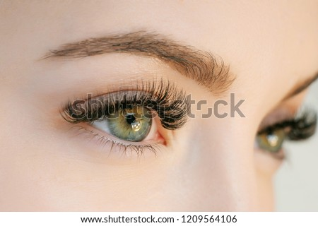 Close up view of beautiful green female eye with long eyelashes, smooth healthy skin. Eyelash extension procedure. Perfect trendy eyebrows. Good vision, contact lenses. Eye health and care.