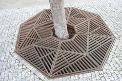 Close up view of beautiful iron grates around the base of the tree on the walkway