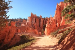 Close up view of Bryce Canyon rock hoodoos with hiking trail at Bryce Canyon National Park in Utah, USA