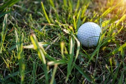 Close-up view of golf ball on the green grass. Golf ball on fairway of beautiful golf course at summer sunset. Golf is a sport that must be played on the lawn.