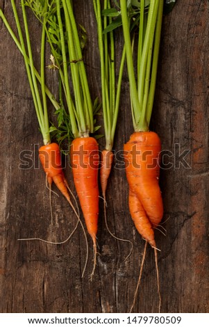 Close-up view of heap of fresh carrot on wooden rustic background. Healthy eating concept. Homegrown food.