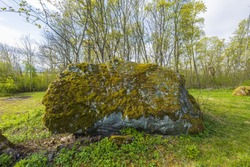 Close up view of huge rock covered with green moss on tall forest trees background.
