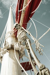 close up view of  human skeleton hanging out in summer environment