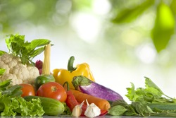 Close up view of nice fresh vegetables  on color  back