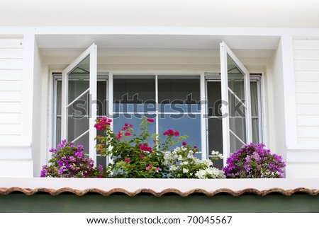 Close up view of nice white framed window with flowers