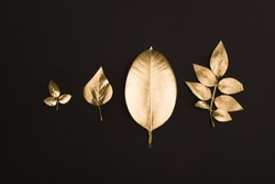 close up view of shiny golden leaves arranged in line isolated on black