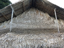 close up view of thatching roof