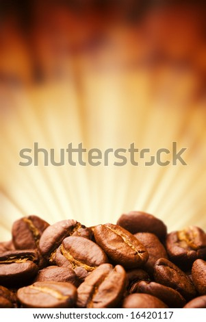 Close up view of the coffee bean