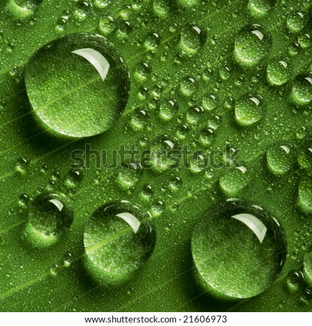 Close up view of the water drops background