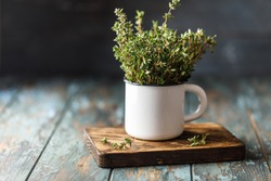 Close up view of thyme bunch. Green thyme in a mug