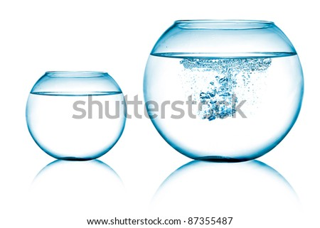 close up view of  two fish bowls on white background