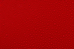 Close up water drops on dark red tone background. Abstarct pink wet texture with bubbles on window glass surface. Raindrop, Realistic pure water droplets condensed for creative banner design. black