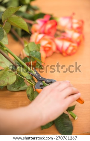 Close-up. Young female florist cutting a roses with secateur at flower shop.