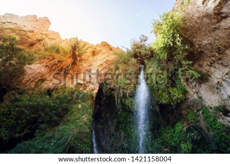 Close uup of Great Falls Shulamit falling from the top of mountain with green trees and bushes. Ein Gedi - Nature Reserve and National Park, Israel. Exotic toutism, ecolological tours, extreme tours