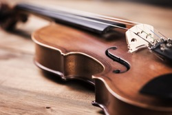 Close view of a violin strings and bridge